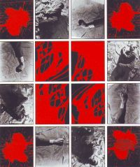 - Gilbert & George Cherry Blossom no.2 1974
